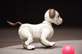 "كلب ""سوني"" الجديد يسمع ويرى ويعبر عن مشاعره وثمنه 1800 دولار"