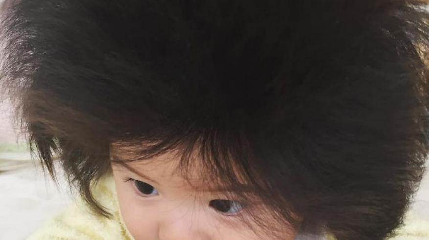This-baby-hairy-will-be-the-cutest-thing-youll-ever-see-today-5b50300378023__700