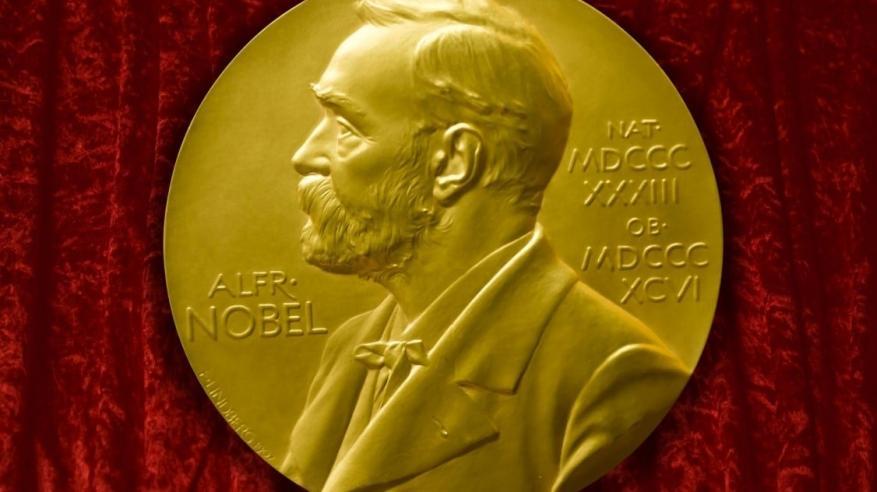 3 علماء يفوزون بجائزة نوبل للكيمياء