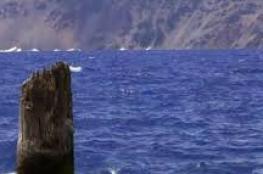"""""""رجل البحيرة العجوز"""" يطفو منذ 120 عامًا فوق الماء (فيديو)"""