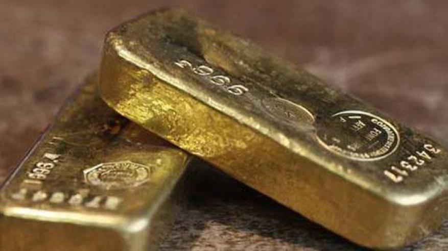 صدق أو لا تصدق .. تهريب الذهب في السودان داخل أرحام الإبل