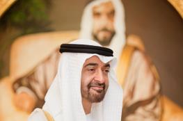 """""""نيويورك تايمز"""": محمد بن زايد يعارض التحولات الديمقراطية بالمنطقة"""