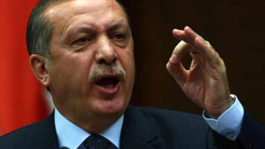 """أردوغان يحرّض الأتراك في أوروبا على تحدّي """"أحفاد النازية"""""""