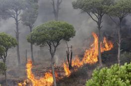 بالفيديو والصور .. الحرائق تستعر في لبنان