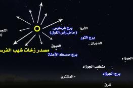 فرصة لهواة التصوير الفلكي في السلطنة .. تساقط زخات شهب البرشاويات وذروتها 11-13 أغسطس