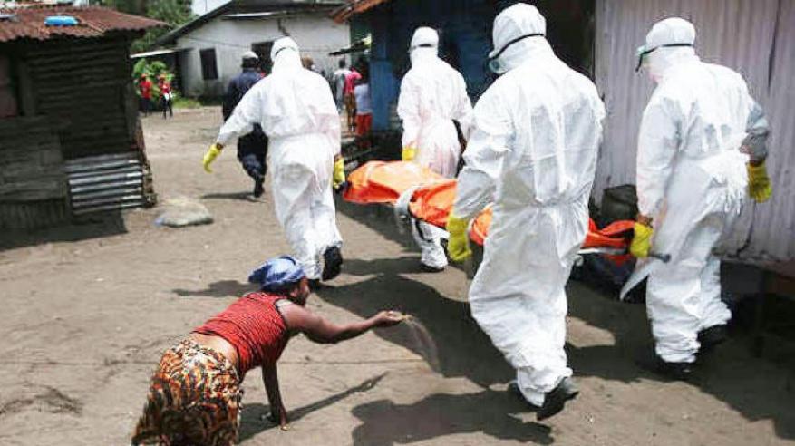 فيروس قاتل يهدد حياة 900 مليون شخص