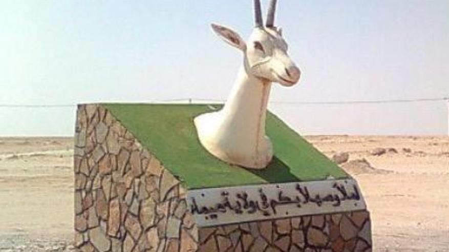 شعار ولاية هيماء