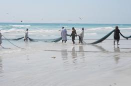 """صيد """"الضواغي"""".. مهنة مربحة للصيادين في طاقة تواجه مخاطر عزوف الشباب وغياب الدعم"""