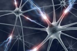 """""""تصوير ما تقتات عليه الخلايا"""".. تقنية جديدة لاكتشاف السرطان"""