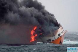 بالفيديو.. شاهد لحظة غرق 2000 سيارة فاخرة في المحيط