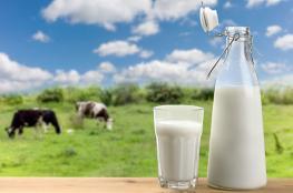 """اختيار 7 شركات محلية تقدمت لمناقصة """"تجميع وتبريد الحليب"""" في ظفار"""
