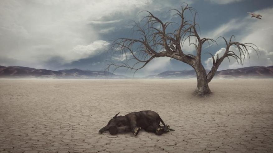 علماء يحذرون من انقراض البشرية بعد 20 عاما