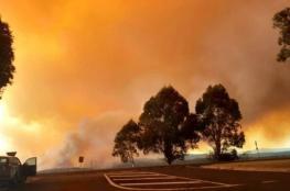 بالفيديو والصور.. حرائق الغابات تستعر في أستراليا