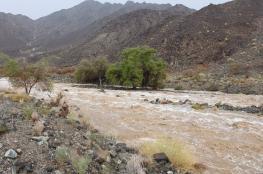 أمطار غزيرة بالرستاق ونخل .. وقطع الحركة المرورية على طريق وادي العق بشمال الشرقية