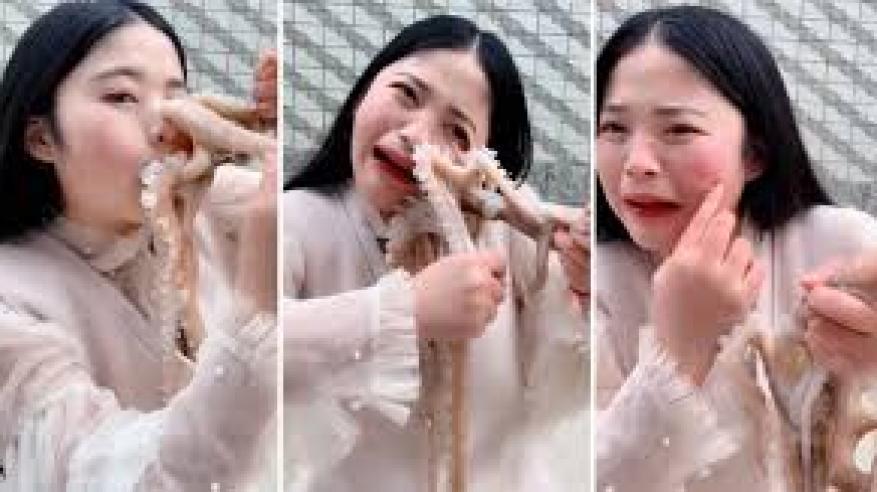 بالفيديو والصور.. أخطبوط يلتهم وجه فتاة على الهواء مباشرة