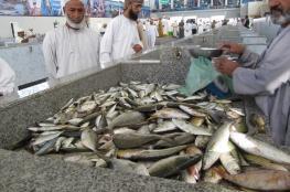 """400 محل لبيع الأسماك خلال رمضان مع بدء """"خطة التسويق"""""""