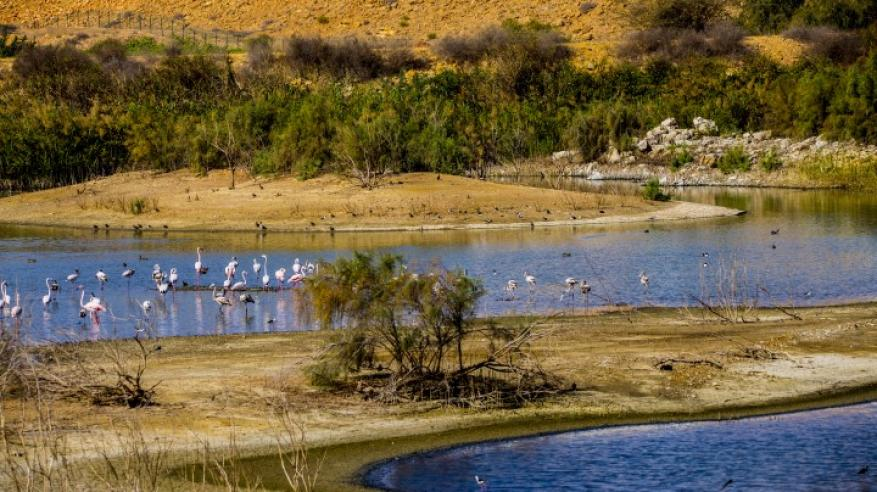 بحيرات الأنصب الخمسة.. مقصد هواة الطبيعة والباحثين والطلبة وهواة التصوير