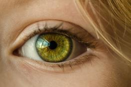 ابتكار أول شبكيّة للعين مصنوعة من مواد لينة