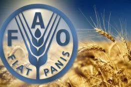 فاو: ارتفاع أسعار الغذاء العالمية في يناير