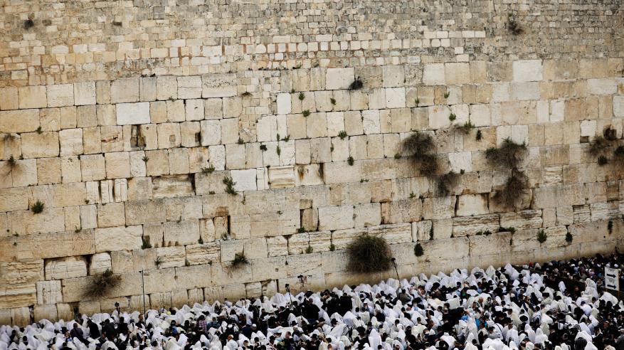 2659465-اليهود-أمام-حائط-المبكى