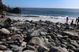 آلاف الثقوب الغريبة قبالة ساحل كاليفورنيا