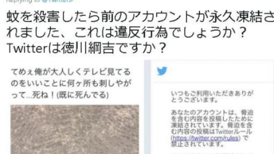 ناموسة تتسبب في إغلاق حساب شخص على تويتر