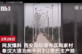 بالفيديو.. 1000 عمود إنارة في طريق يمتد 3 كيلومترات!