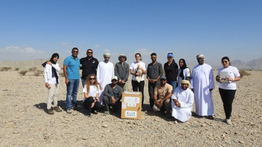 ESO - Egyptian Vulture Release (3)