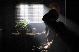 """فيلم الحيوان الإيراني يُعرض في مهرجان """"كان"""""""