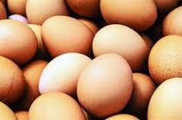 تناول 50 بيضة مرة واحدة.. مصرع هندي حاول كسب رهان!