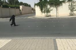 بالفيديو والصور.. غوريلا تجوب شوارع الرياض