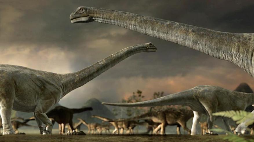 ألمانيا تعرض أكبر ديناصور طائر في العالم