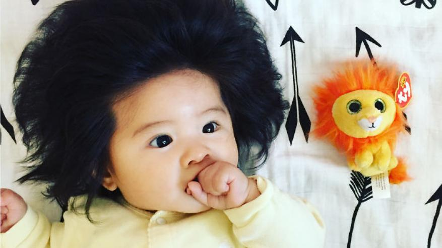 This-baby-hairy-will-be-the-cutest-thing-youll-ever-see-today-5b502ff04a996__700