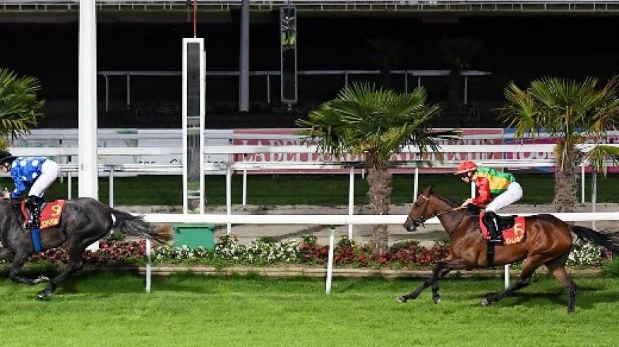 """الخيّالة السلطانية تفوز بالمركز الثاني في """"سباق تولوز"""" بفرنسا"""