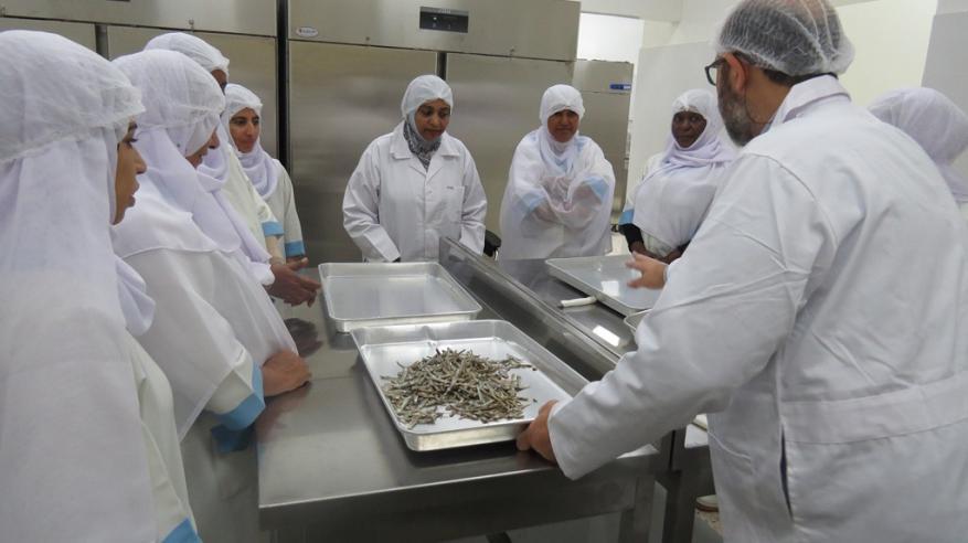 بدء التعريف بمنتجات المصنع التجريبي للمرأة الساحلية في المصنعة.. السبت