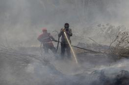 """""""المركزي الإندونيسي"""" يحذر من المخاطر الاقتصادية الناجمة عن حرائق الغابات"""