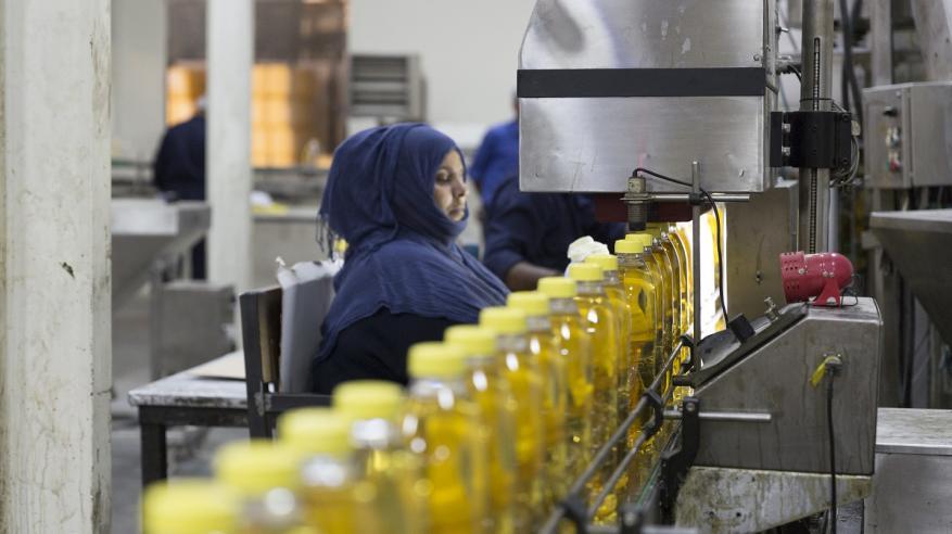 """84 مشروعا منتجا في """"صناعية ريسوت"""" تشغل أكثر من 800 عماني بنهاية 2017"""