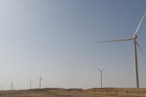 بدء إنتاج الكهرباء في محطة ظفار لطاقة الرياح.. والتشغيل الكامل أواخر العام الجاري
