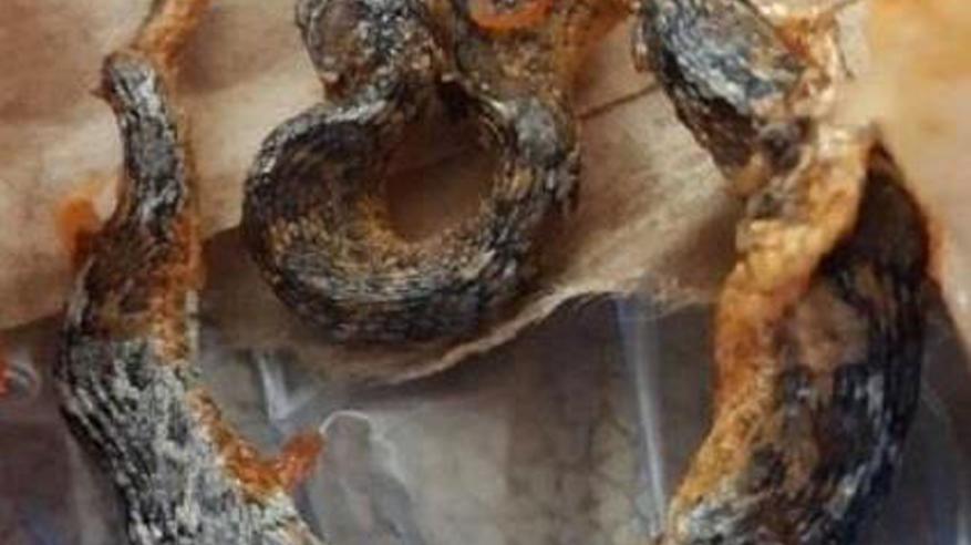 بالفيديو.. حقيقة العثور على ثعبان داخل وجبة مندي