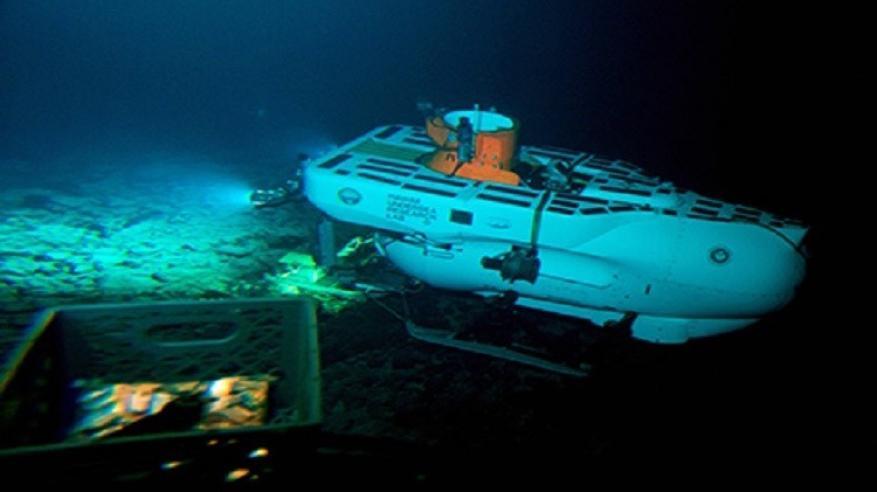 """علماء: """"كائنات غريبة"""" تعيش في أعماق المحيط الهادئ!"""