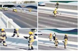 بالفيديو.. الدفاع المدني في الإمارات يغلق شارعا لإنقاذ قطة