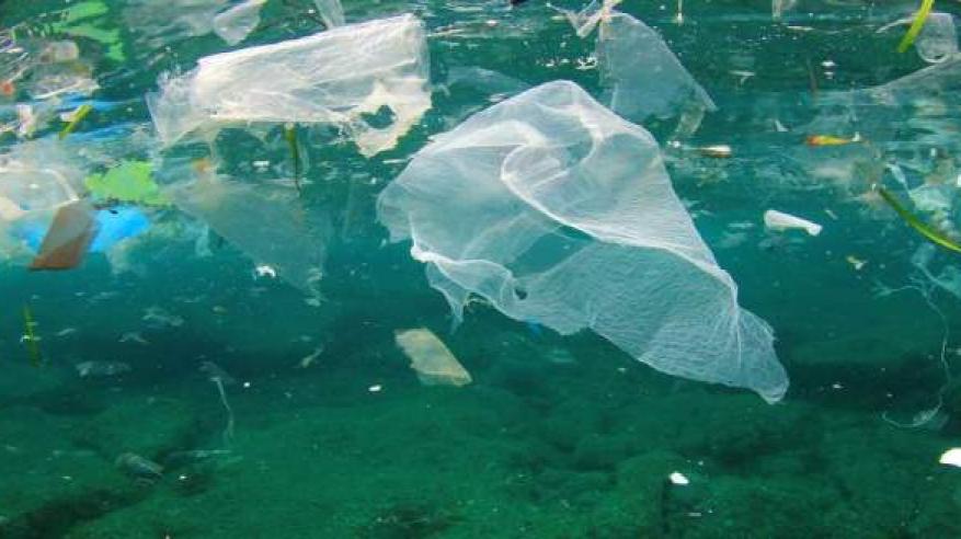 البابا يطلق نداء لتنظيف المحيطات من البلاستيك