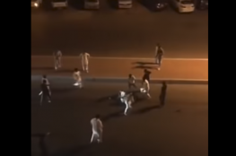 بالفيديو.. تفاصيل الشجار الجماعي الدموي الذي هز الشارع السعودي