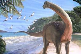"""اكتشاف """"أضخم ديناصورات الأرض"""" في مصر"""