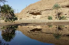 """""""بلاد الشهوم"""".. مقومات أثرية وسياحية تنبض بالحياة في قلب ولاية عبري"""