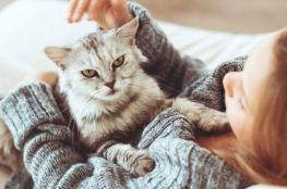 تعرف على أخطر 7 أمراض تنقلها الحيوانات إلى البشر