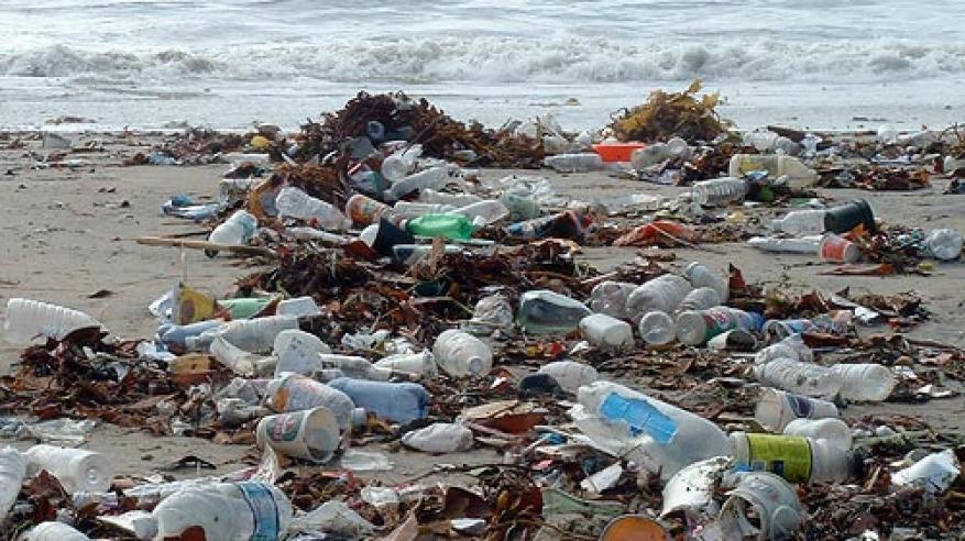 """""""إنزيم"""" يأكل البلاستيك ويكافح التلوث"""