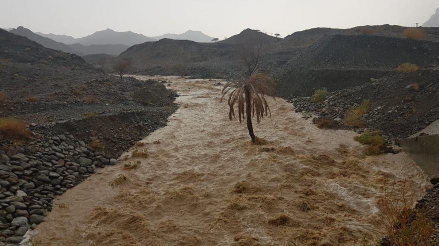 أمطار متفاوتة الغزارة على عدد من محافظات السلطنة..وشمال الشرقية تسجل أعلى كمية