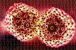 """""""منظمة الصحة"""": الرصد المبكر للسرطان يحمي ملايين البشر.. و21 مليون مصاب بحلول 2030"""