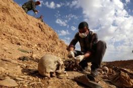 """اكتشاف 200 مقبرة جماعية لضحايا """"داعش"""" بالعراق"""